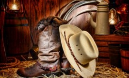 The Rodeo: Wauconda, IL