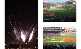 Chicago White Sox Game:  Good Times!