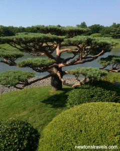 Chicago Botanic Japanese Garden