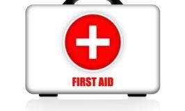 Emergency Medical Travel Kit