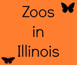 Zoos In Illinois