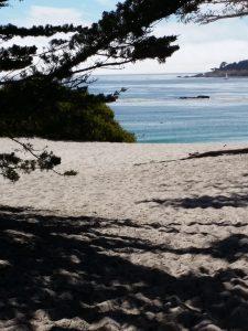 Carmel Beach, CA view