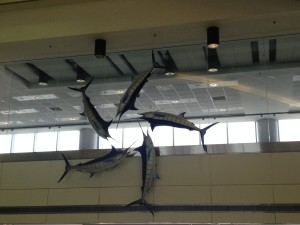Decor Miami Airport