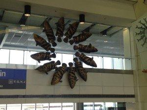 Miami Airport Fish