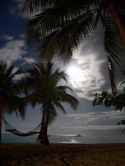 Jamaica Moonshine