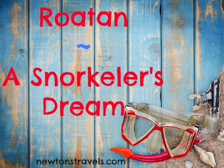 Roatan Snorkelers Dream