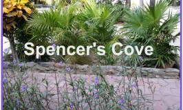 Spencer's Cove Rental