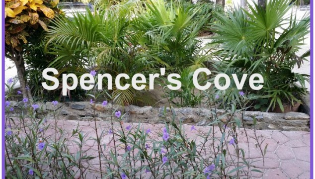 Spencer's Cove Rental
