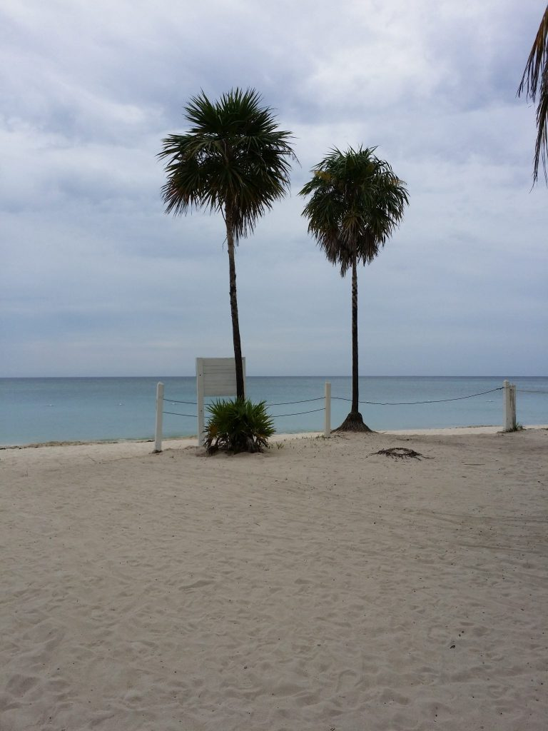 View from Casa de Paradise Rental