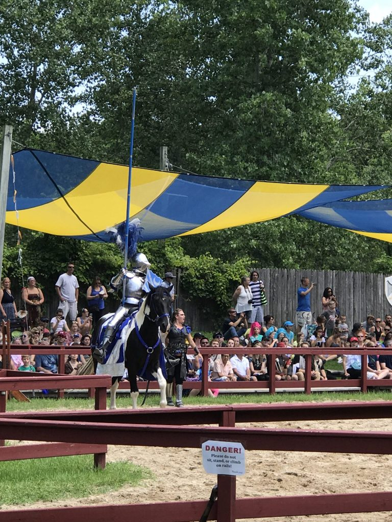 Jousters Battle Arena