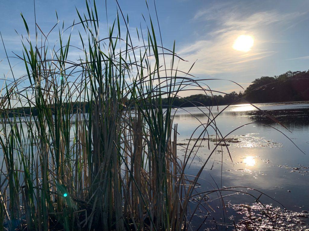Chain O Lakes lake